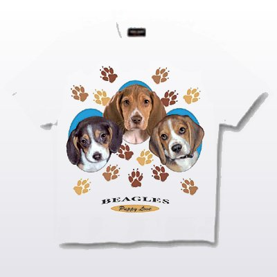 Beagle - T Shirt - Puppies & Paws