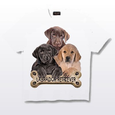 Labrador, Black - T Shirt - Puppies & Bisquits