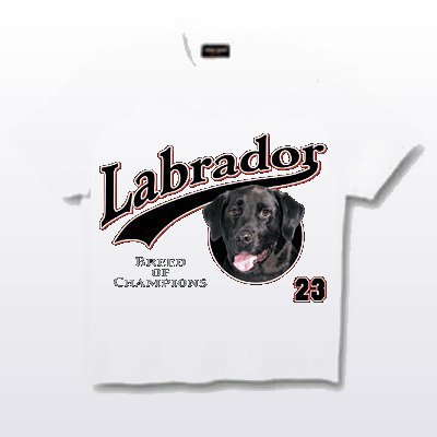 Labrador, Black - T Shirt - Breed of Champions