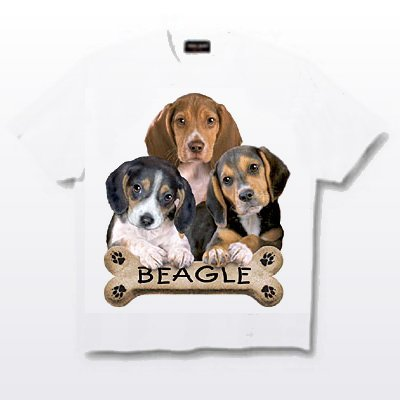 Beagle - T Shirt - Puppies & Bisquits