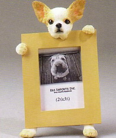 "Chihuahua, Fawn - Dog Photo Frame 2 1/2"" X 3 1/2"""