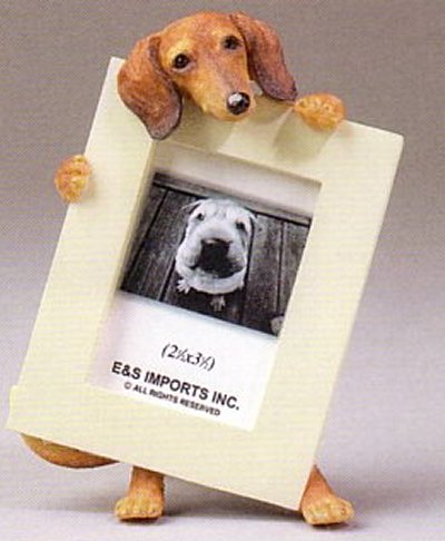 "Dachshund, Brown - Dog Photo Frame 2 1/2"" x 3 1/2"""