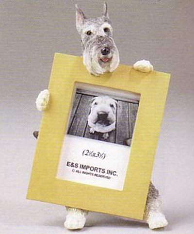 "Schnauzer, Cropped - Dog Photo Frame 2 1/2"" x 3 1/2"""