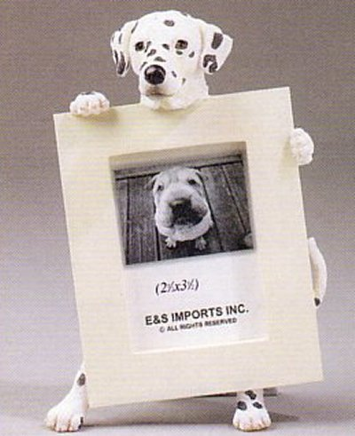 "Dalmatian - Dog Photo Frame 2 1/2"" x 3 1/2"""