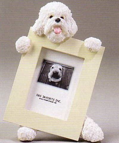 "Bichon Frise - Dog Photo Frame  2 1/2"" x 3 1/2"""