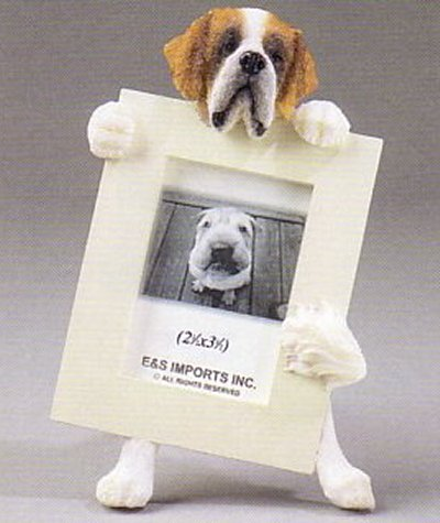 "Saint Bernard - Dog Photo Frame 2 1/2"" x 3 1/2"""