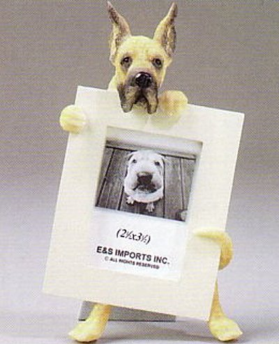 "Great Dane, Cropped - Dog Photo Frame 2 1/2"" x 3 1/2"""
