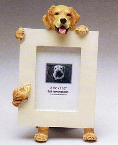 "Golden Retriever - Dog Photo Frame 2 1/2"" x 3 1/2"""