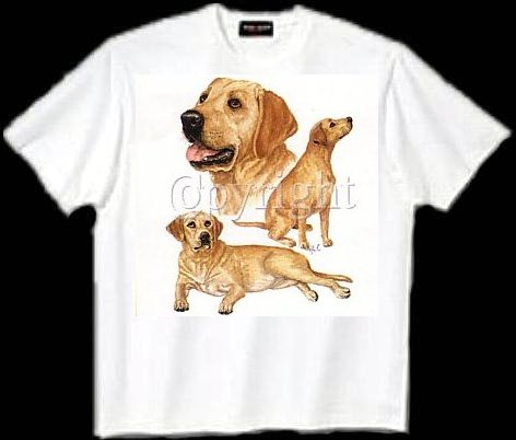 Labrador, Yellow - T Shirt - Collage