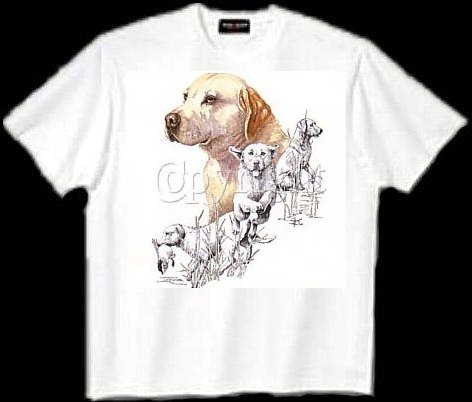 Labrador, Yellow - T Shirt - Collage 2