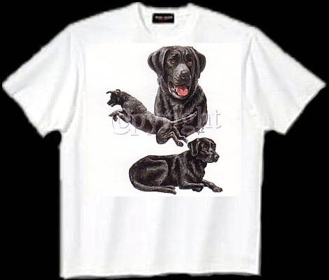 Labrador, Black - T Shirt - Collage
