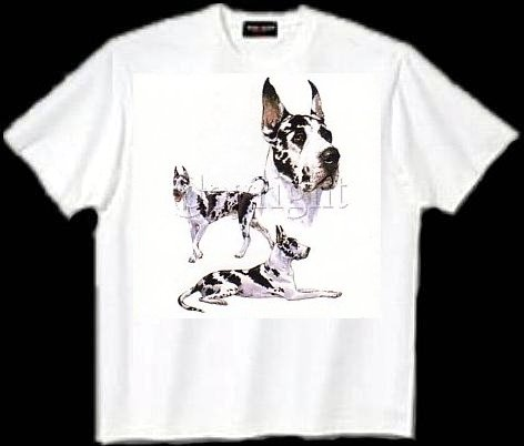 Great Dane, Cropped - T Shirt - Collage
