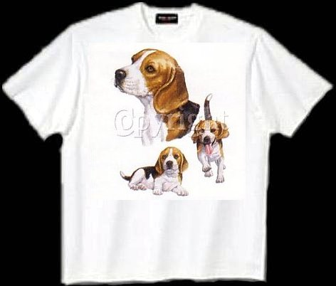 Beagle - T Shirt - Collage