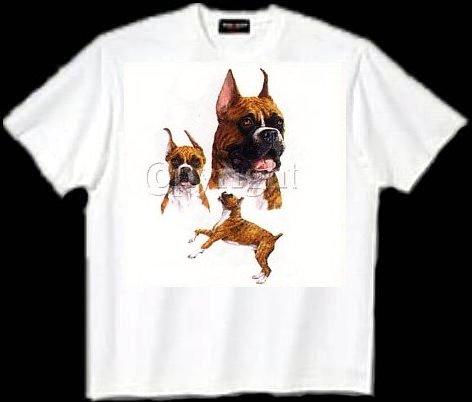 Boxer, Cropped - T Shirt - Collage