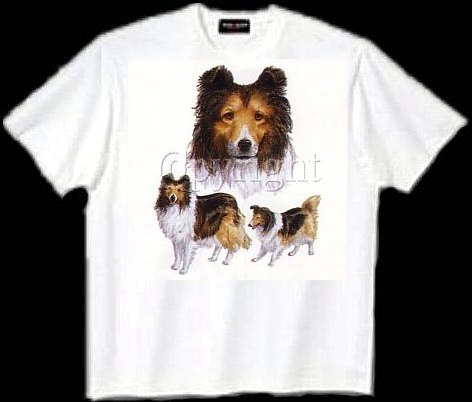 Collie, Sable - T Shirt - Collage
