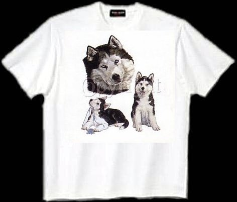 Siberian Husky - T Shirt - Collage