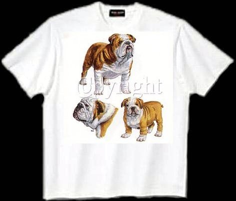 Bulldog, English - T Shirt - Collage