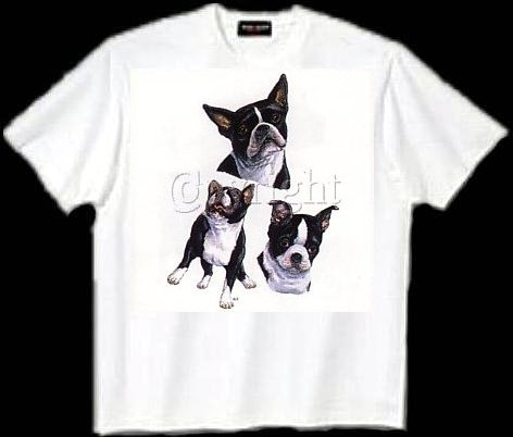 Boston Terrier - T Shirt - Collage