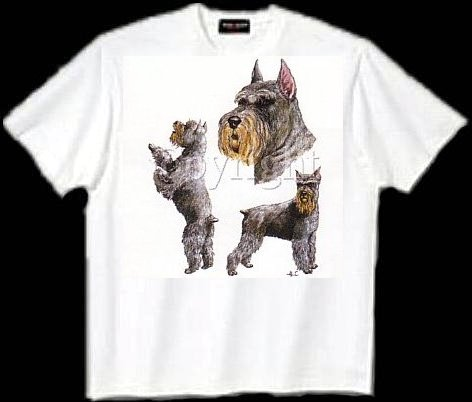Schnauzer, Cropped - T Shirt - Collage