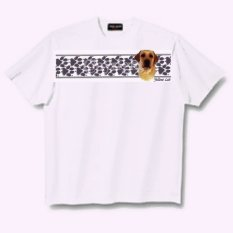 Silky Terrier - T Shirt - Paws & Stripes