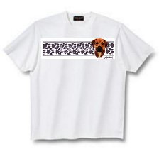Rhodesian Ridgeback - T Shirt - Paws & Stripes