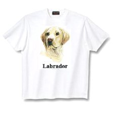 Labrador, Yellow - T Shirt - Canine World
