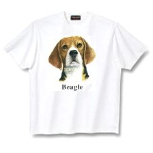 Beagle - T Shirt - Canine World