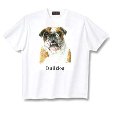 Bulldog, English - T Shirt - Canine World