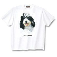 Havanese - T Shirt - Canine World