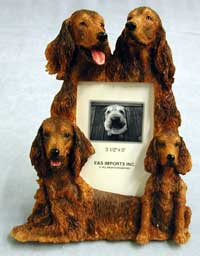 "Irish Setter - Dog Photo Frame 3 1/2"" x 5"""