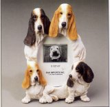 "Basset Hound - Dog Photo Frame 3 1/2"" x 5"""