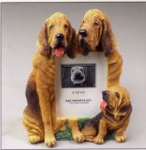"Bloodhound - Dog Photo Frame 3 1/2"" x 5"""
