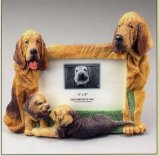 "Bloodhound - Dog Photo Frame 4"" x 6"""
