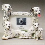 "Dalmatian - Dog Photo Frame 4"" x 6"""