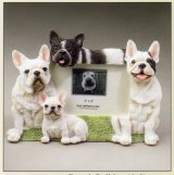 "French Bulldog - Dog Photo Frame 4"" x 6"""