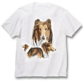 Collie, Sable - T Shirt - Best Friends