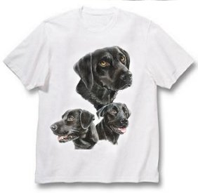 Labrador, Black - T Shirt - Best Friends