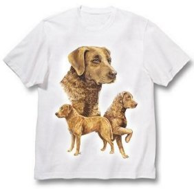 Chesapeake Bay Retriever - T Shirt - Best Friends