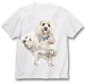 Cockerpoo - T Shirt - Best Friends