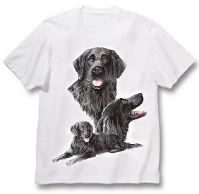 Flat Coat Retriever - T Shirt - Best Friends