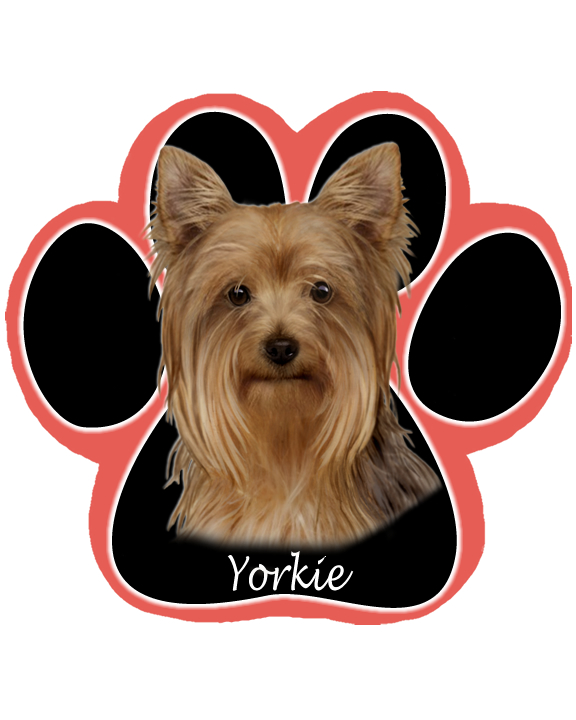 Yorkshire Terrier - Computer Mousepad
