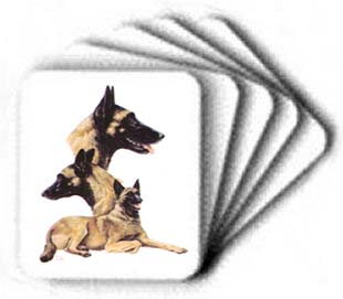 Belgian Malinois - Computer Mouse Pad