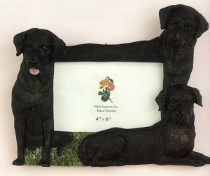 "Labrador, Black - Dog Photo Frame 4"" x 6"""