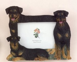 "Rottweiler - Dog Photo Frame 4"" x 6"""