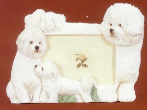 "Bichon Frise - Dog Photo Frame 4"" x 6"""