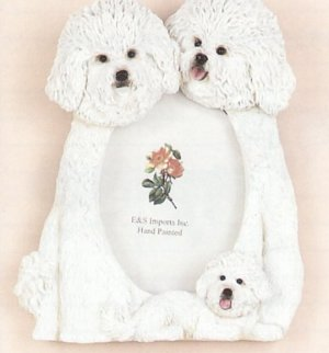 "Bichon Frise - Dog Photo Frame 3 1/2"" x 5"""