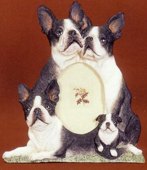 "Boston Terrier - Dog Photo Frame 3 1/2"" x 5"""