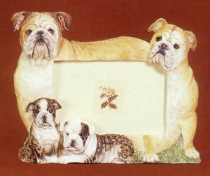 "Bulldog, English - Dog Photo Frame 3 1/2"" x 5"""