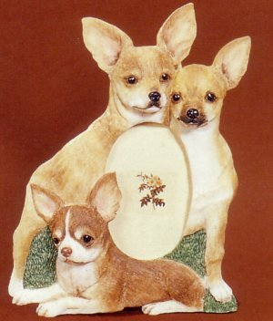 "Chihuahua, Fawn - Dog Photo Frame 3 1/2"" x 5"""
