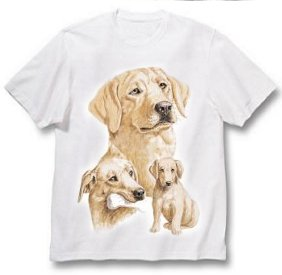 Labrador, Yellow - T Shirt - Best Friends